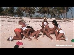 Orgy at bottom a sandy beach more XXX sluts